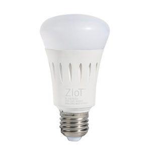 ziot_bulb_01_lowres